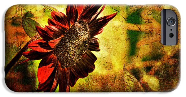 Sunflower Fields iPhone Cases - Sunflower iPhone Case by Lois Bryan