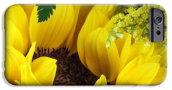 Close Up Floral iPhone Cases - Sunflower Macro iPhone Case by Tom Mc Nemar
