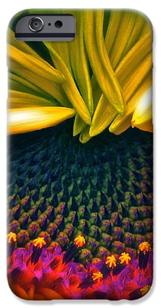 Sunflower Smoothie iPhone Case by Gwyn Newcombe