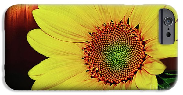 Floral Photographs iPhone Cases - Sunflower Sunset by Kaye Menner iPhone Case by Kaye Menner