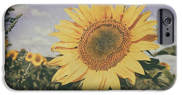 Abstract Sunflower iPhone Cases - Sunflower iPhone Case by SK Pfphotography