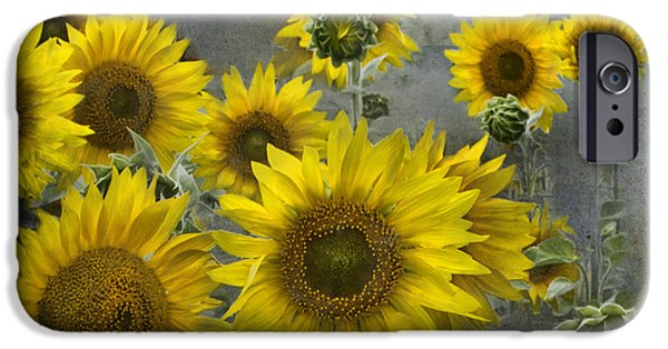 Crops iPhone Cases - Sunflowers in Michigan iPhone Case by Evie Carrier