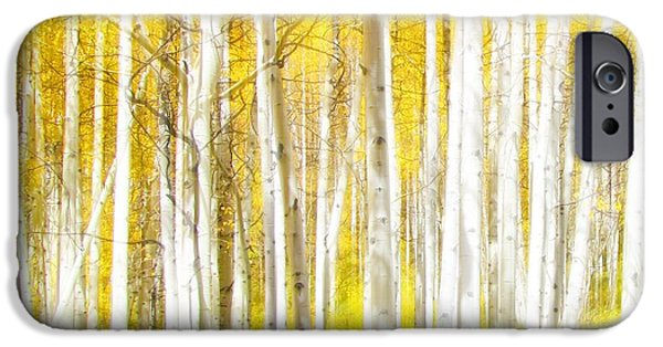 Pastel iPhone Cases - Sunlit Aspens iPhone Case by LeAnne Perry