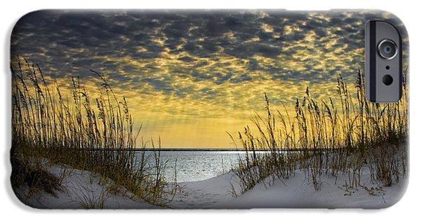 Florida iPhone Cases - Sunlit Passage iPhone Case by Janet Fikar