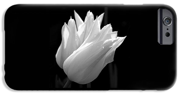 Nature iPhone Cases - Sunlit White Tulips iPhone Case by Rona Black