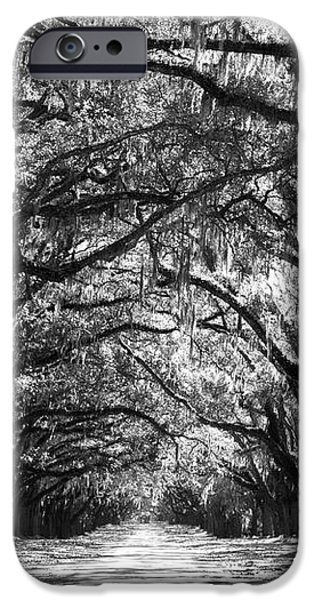 Sunny Southern Day - Black and White iPhone Case by Carol Groenen