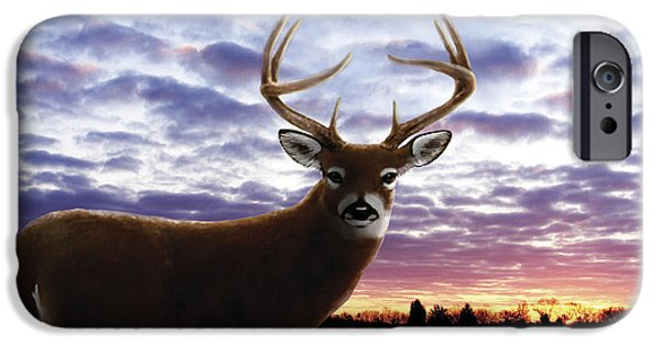 Bhymer iPhone Cases - Sunrise Buck iPhone Case by Barbara Hymer