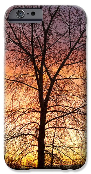 Unset iPhone Cases - Sunrise December 16th 2010 iPhone Case by James BO  Insogna
