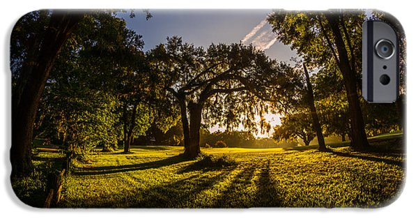 Overhang iPhone Cases - Sunrise Spanish Moss Shadows iPhone Case by Chris Bordeleau