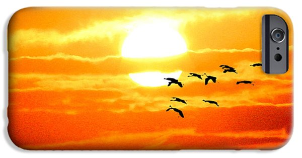 Waterscape Mixed Media iPhone Cases - Sunrise / sunset / Sandhill Cranes iPhone Case by W Gilroy