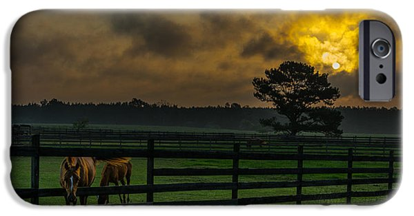 Field. Cloud Tapestries - Textiles iPhone Cases - Sunrise with horses iPhone Case by James Hennis