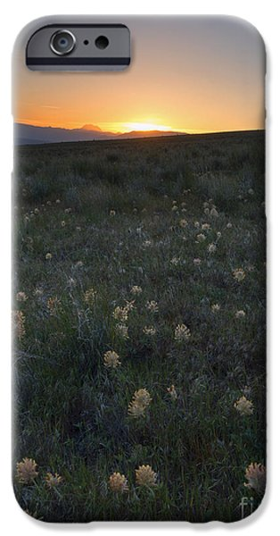 Yakima Valley iPhone Cases - Sunset and Clover iPhone Case by Mike Dawson