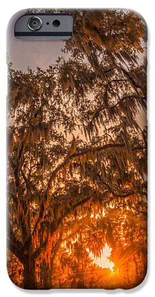 Overhang iPhone Cases - Sunset at Gascoigne Bluff iPhone Case by Chris Bordeleau