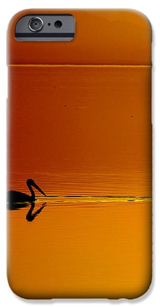 Sunset Cruising iPhone Case by Laurie Search