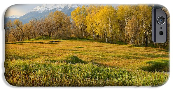 Meadow Photographs iPhone Cases - Sunset from Cascade Meadows. iPhone Case by Johnny Adolphson