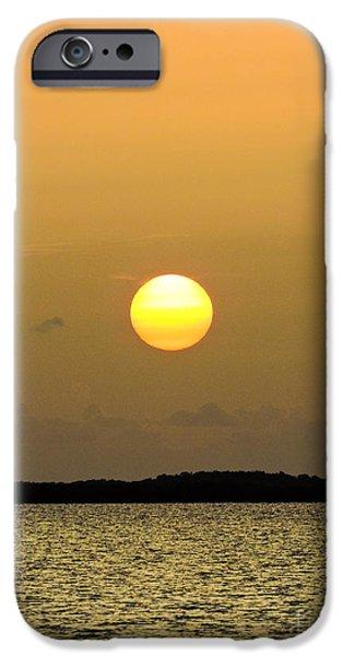 Mist iPhone Cases - Sunset Haze iPhone Case by Marilee Noland