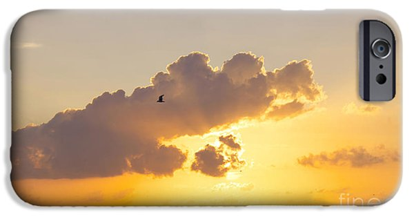 North Sea iPhone Cases - Sunset in Buesum iPhone Case by Angela Doelling AD DESIGN Photo and PhotoArt