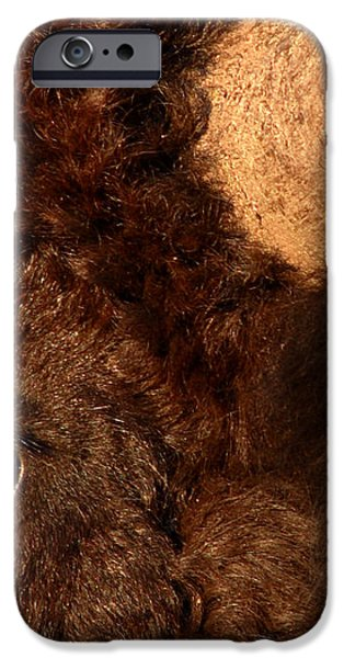 Sunset Reflections In The Eye Of A Buffalo iPhone Case by Max Allen