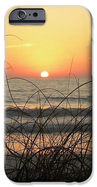 Sunset Sea Grass iPhone Case by Sean Allen