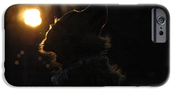 Cute Puppy iPhone Cases - Sunset Silhouette iPhone Case by Joy Alfandre