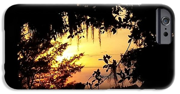 Multimedia iPhone Cases - Sunset Splendor iPhone Case by Ann Hamlin