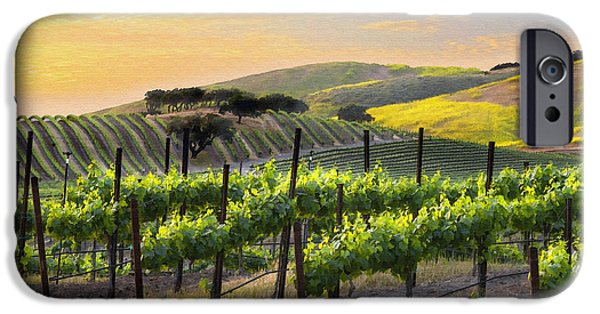 Vineyard Landscape iPhone Cases - Sunset Vineyard iPhone Case by Sharon Foster