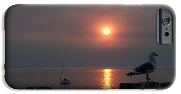 Ocean Sunset iPhone Cases - Sunset With Seagull iPhone Case by John R Bryant
