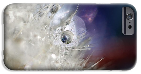 Abstract Floral Art iPhone Cases - Supernova iPhone Case by Amy Tyler