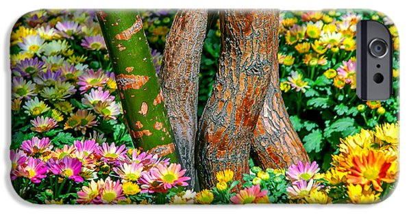 Spring Photographs iPhone Cases - Surrounded iPhone Case by Az Jackson