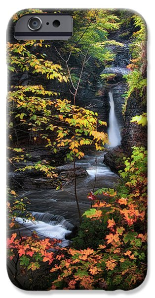 Surrounded by Fall iPhone Case by Neil Shapiro