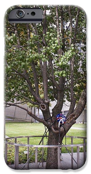 Rebuilt iPhone Cases - Survivor Tree iPhone Case by Teresa Mucha