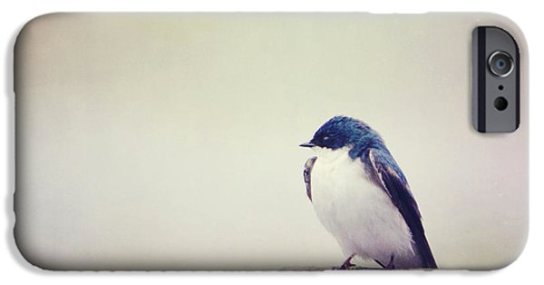Barn Swallow iPhone Cases - Swallow At Rest iPhone Case by Margaret Helthaler