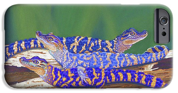 Orange Pastels iPhone Cases - Swamp Babies iPhone Case by Tracy L Teeter
