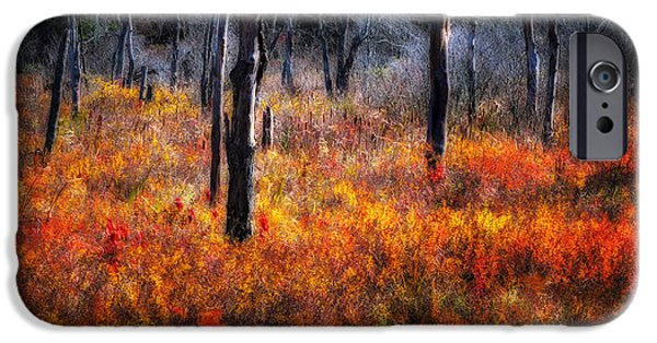 Impressionist Photography iPhone Cases - Swamp Music - A Late Autumn Impressionist scenic iPhone Case by Thomas Schoeller