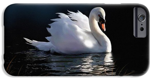 Swans... iPhone Cases - Swan Elegance iPhone Case by Robert Foster