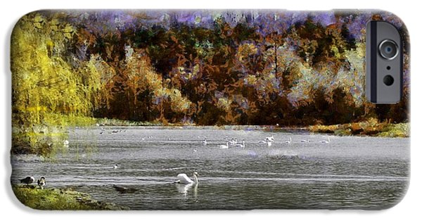 Swans... iPhone Cases - Swan Lake iPhone Case by Jean-Marc Lacombe