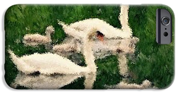 Swans... iPhone Cases - Swans at Rest iPhone Case by Scott Johnson