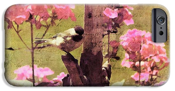Animals Photographs iPhone Cases - Sweet Chickadee iPhone Case by Tina  LeCour