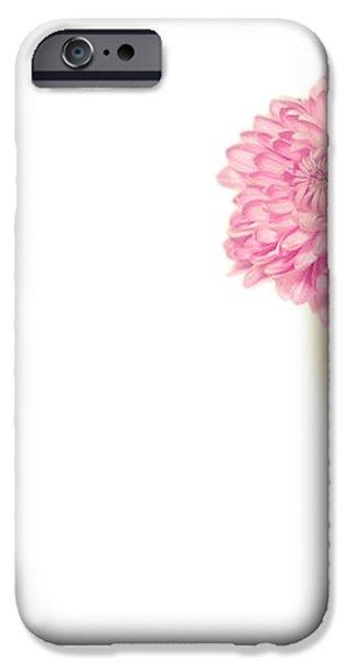 Sweet Harmony iPhone Case by Evelina Kremsdorf