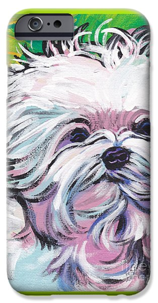 Maltese Puppy iPhone Cases - Sweet Maltese  iPhone Case by Lea