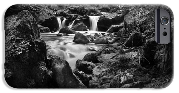 Dave iPhone Cases - Swiss Falls-monochrome iPhone Case by David Hare