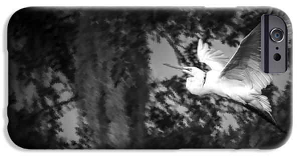 Sea Birds Photographs iPhone Cases - Take Flight iPhone Case by Marvin Spates