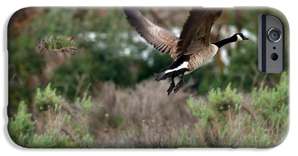 Haybale iPhone Cases - Take Off iPhone Case by Robert Bales
