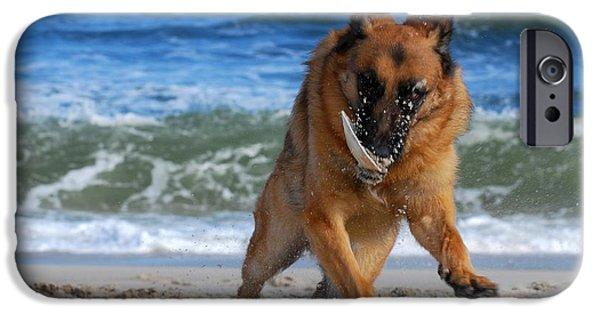 Dog Photograph Canvas iPhone Cases - Take Off With A Clam Shell - German Shepherd Dog iPhone Case by Angie Tirado