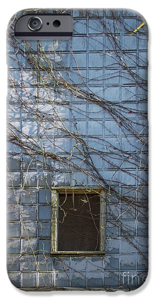 Glass Wall iPhone Cases - Taken Mary Leila Cotton Mill 1899 iPhone Case by Reid Callaway