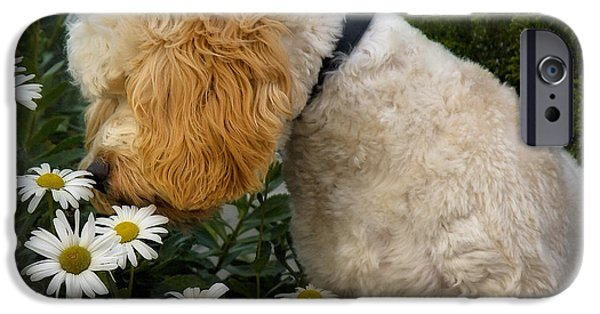 Recently Sold -  - Puppy Digital iPhone Cases - Taking Time To Smell The Flowers iPhone Case by Susan Candelario