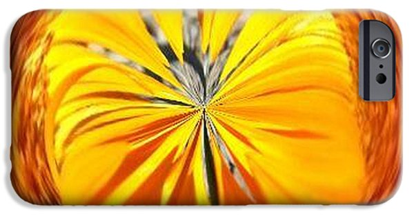 Nature Abstracts iPhone Cases - Tangerine  iPhone Case by William Goodson