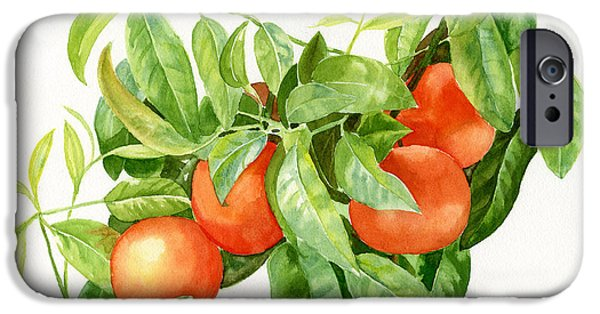 Tangerine Paintings iPhone Cases - Tangerines with Leaves iPhone Case by Sharon Freeman