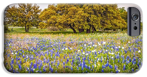 Oak Creek iPhone Cases - Tapestry of Wildflowers at Willow City Loop - Texas Hill Country iPhone Case by Silvio Ligutti