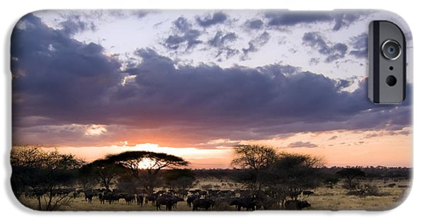 Masai Mara Photographs iPhone Cases - Tarangire Sunset iPhone Case by Adam Romanowicz